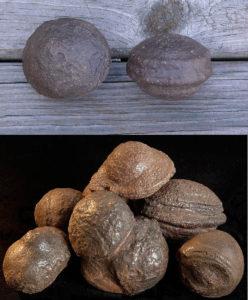 KPO Ultima Thule Moqui marbles