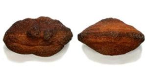 Kuiper Belt object Moqui marbles