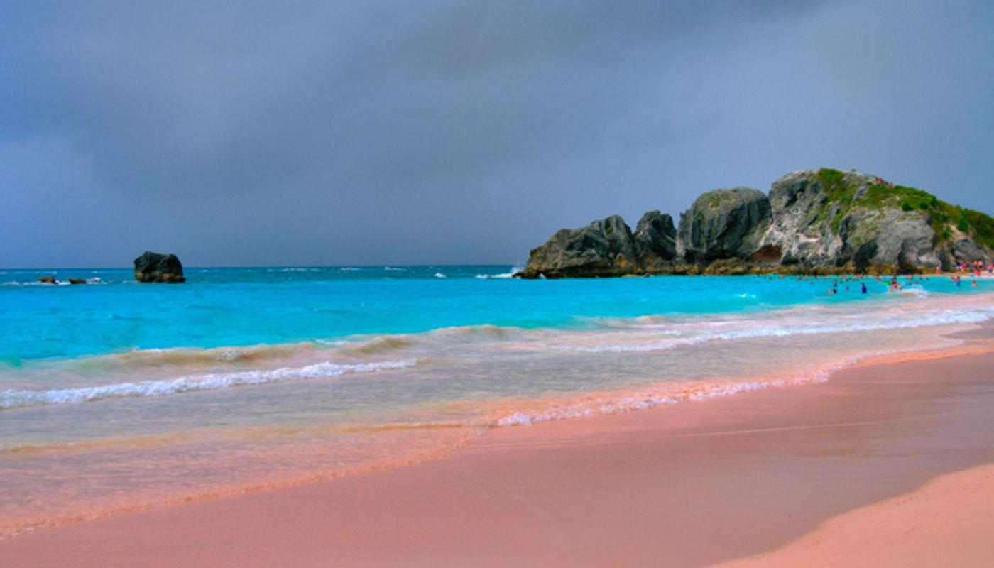Pink Horseshoe Bay Bermuda