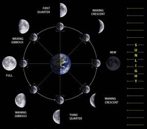 earth moon connection physical