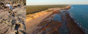 Australia dinosuar tracks