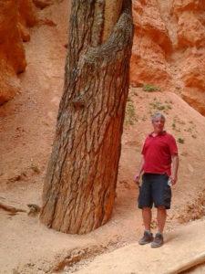 Electric Universe geology tour Bryce Canyon James Sorensen