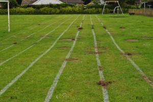 molehills along lines - natural wonders puzzles
