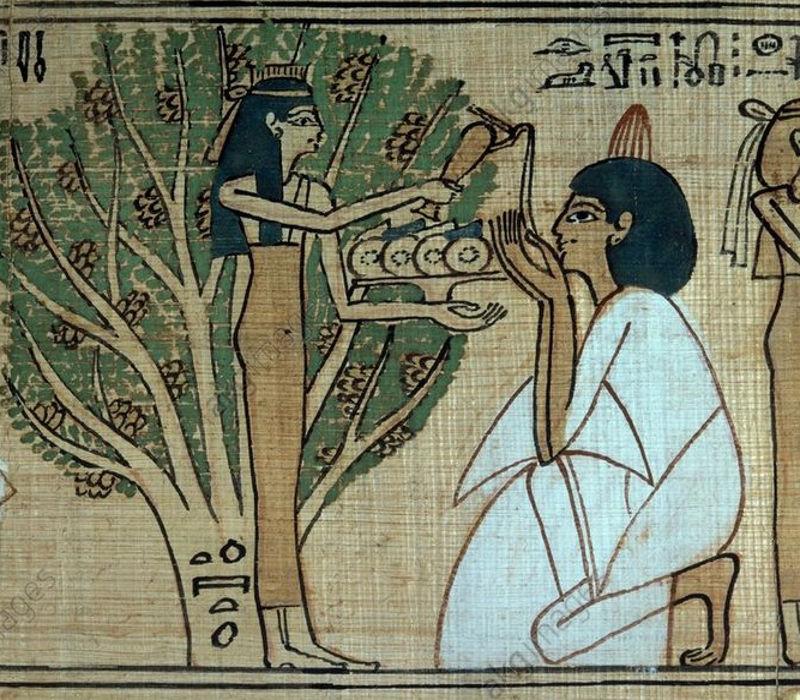 egyptian tree suckling life hathor