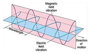 universal information frequency electromagnetic fields akashic records