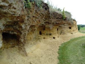 Sutton Knoll solution pipe Coralline Crag