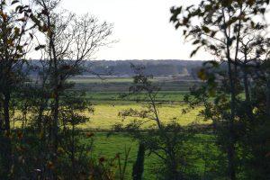 River Waveney Valley