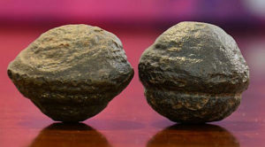 Moqui marbles Ultima Thule concretions