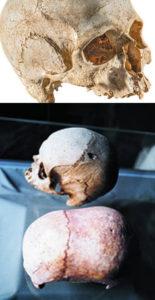 Malta elongated skulls hypogeum