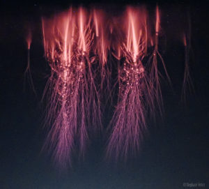Red Sprites plasma filaments
