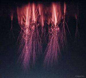 Red Sprites plasma filaments