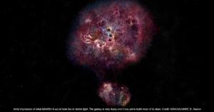 Dusty Plasma Cosmonogy