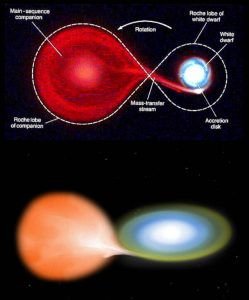 rogue planets and their binary companions common envelope