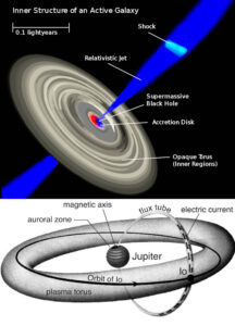 black hole torus plasma