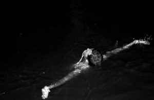 natural electromagnetic circuits night swimming