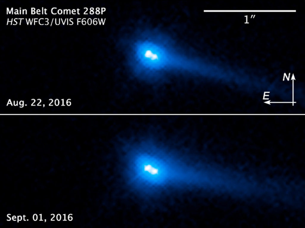 active asteroids are comets evidence