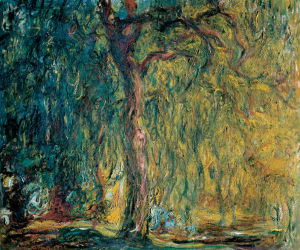 aphakia claude monet seeing ultraviolet