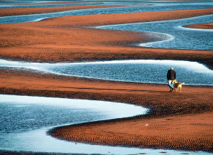 red coloured beaches sandy where