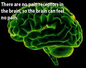 brain no pain receptors why how design akashic records