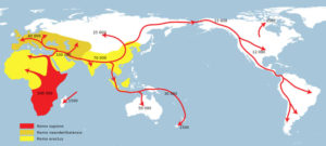 DNA theories Basal Eurasians