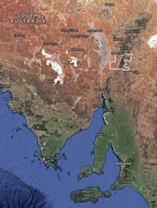 Warratyi shelter australia genetics
