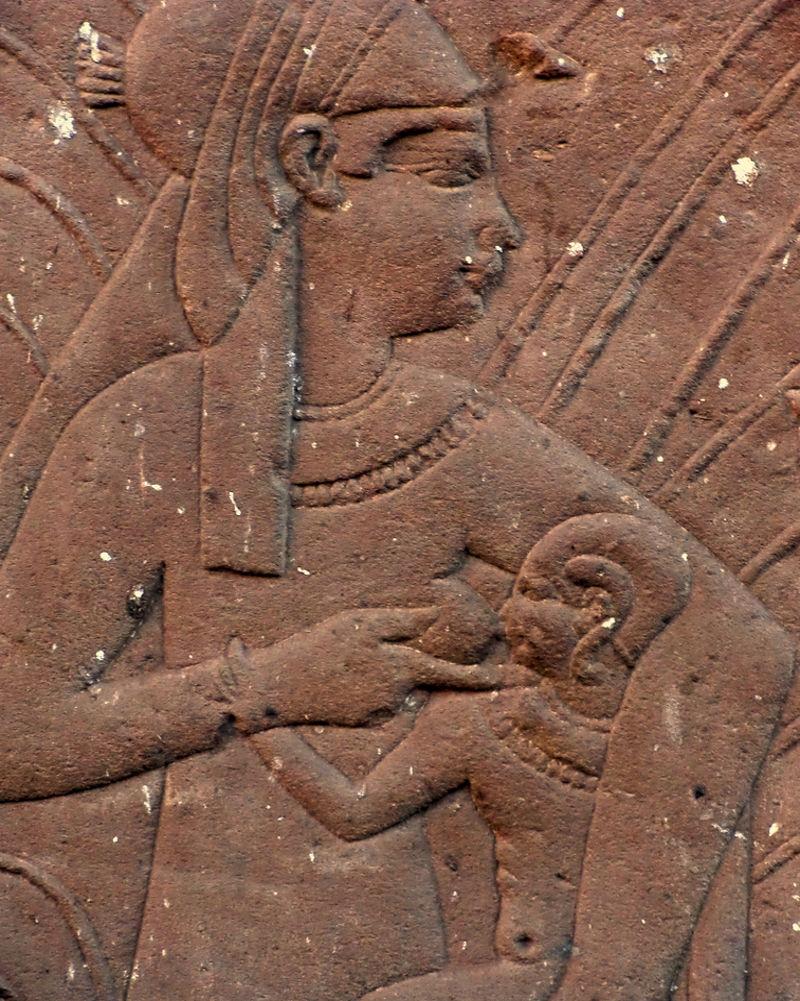 egyptian suckling
