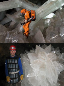 extremophiles viruses humans chemicals crystals