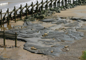 Happisburgh footprints