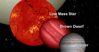 Brown dwarfs stars are gas giants planet