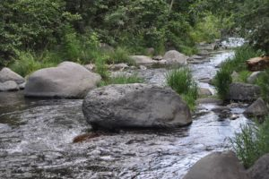 Oak Creek Canyon stream river Sedona