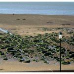 Hunstanton beaches norfolk wave cut platforms
