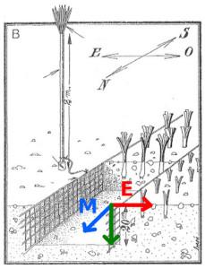 magnetoculture magneto agriculture