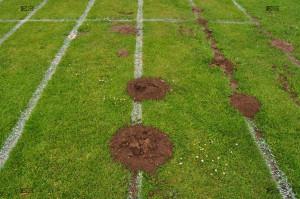 Northrepps Playing Field school lane moles hills