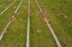 northrepps sports field - mole hills norfolk