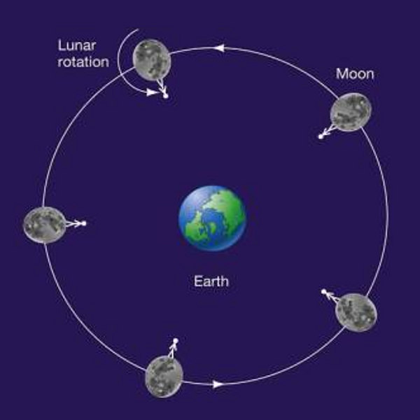 tidal locked moons planets earth moon rotation