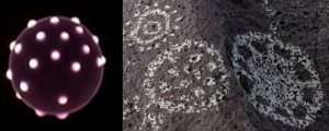 petroglyphs representing sun sky changes flowers stages cups marks dot spot
