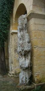 Buskett Gardens Malta limestone pipe minerals