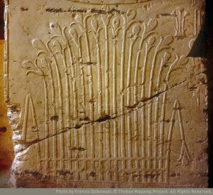 Egyptian Steves
