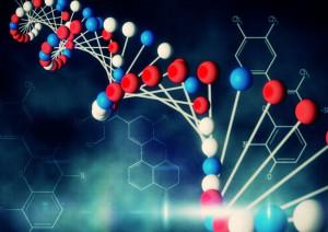 transmutations changes conversions of elements chemicals compounds
