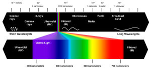 trichromats tetrachromats Aphakia Claude Monet ultraviolet