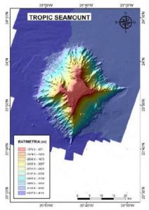 Tropic Seamount rare earth minerals formation