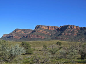 Wilpena Pound geology