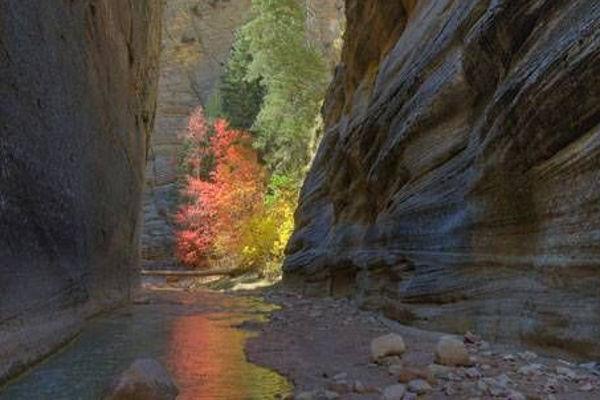 Zion Narrows Zion Canyon